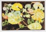 b.Odom.Hawaiian.Lily.5.15x12.lowres